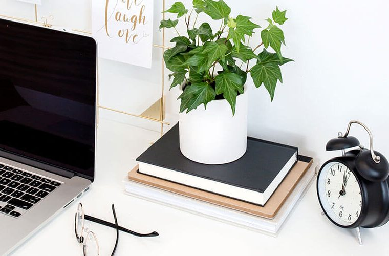 laptop, plant on top of books, glassess and clock on desktop