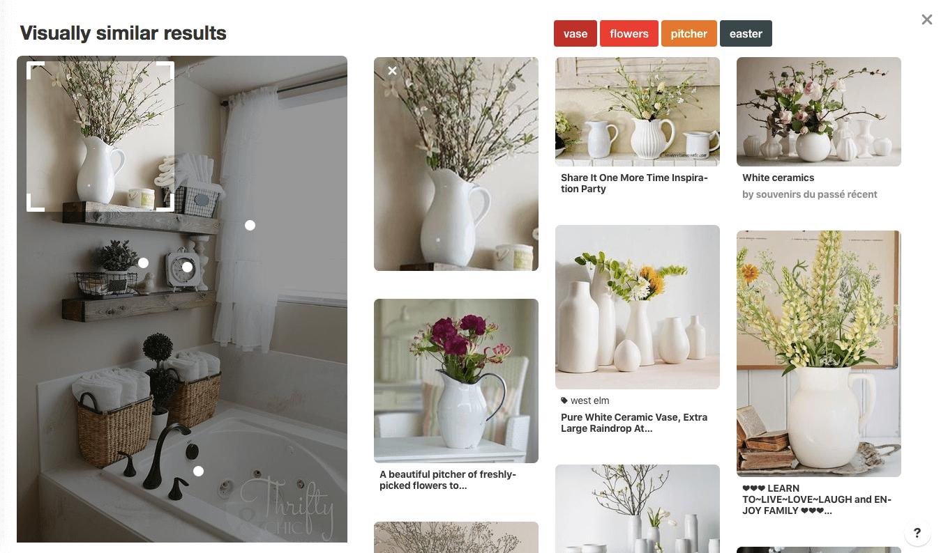 screenshot of visual search on pinterest